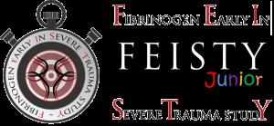 Feisty Junior Logo transparent